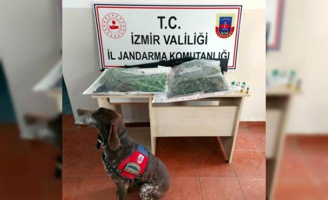 İzmir'de uyuşturucuya 2 gözaltı