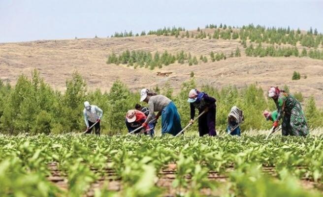 Çiftçiler 'görev belgesi' almalı mı?