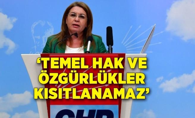 """Gülizar Biçer Karaca: """"Temel hak ve özgürlükler kısıtlanamaz"""""""