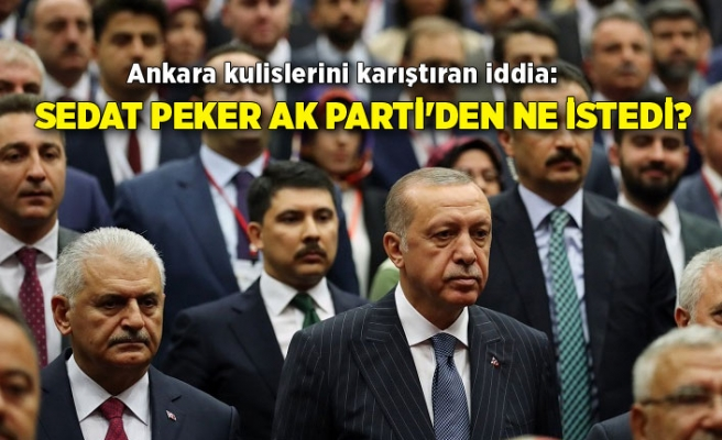 Ankara kulislerini karıştıran iddia: Sedat Peker AK Parti'den ne istedi?