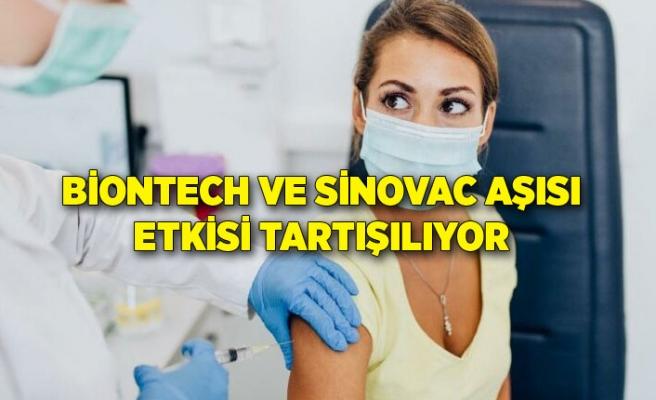 Biontech ve Sinovac aşısı etkisi tartışılıyor