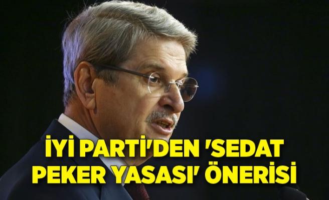 İYİ Parti'den 'Sedat Peker Yasası' önerisi