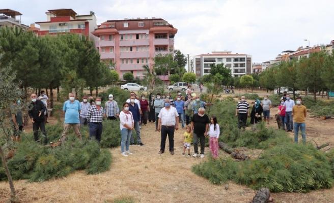 Özel arazideki ağaç kesimi tepki çekti