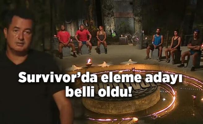 Survivor'da eleme adayı belli oldu!