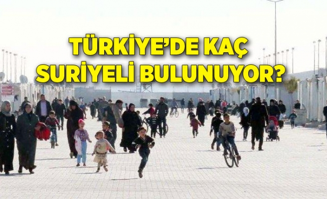 Türkiye'de kaç Suriyeli bulunuyor?
