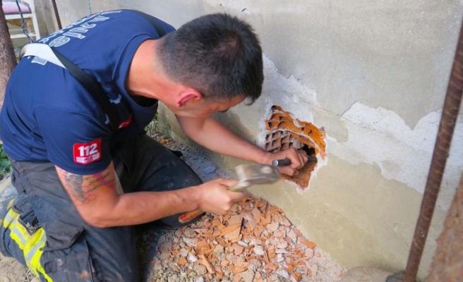 Duvarı delip, yavru kediyi kurtardılar