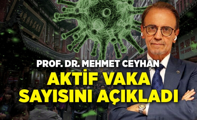 Prof. Dr. Mehmet Ceyhan aktif vaka sayısını açıkladı