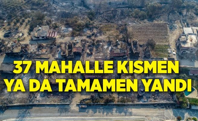37 mahalle kısmen ya da tamamen yandı