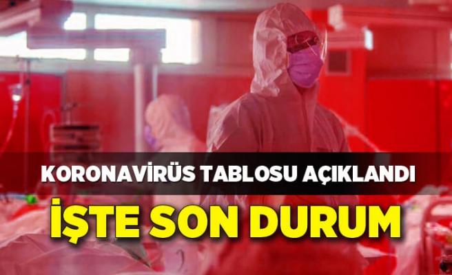 Koronavirüs Tablosu (13 Ekim 2021)