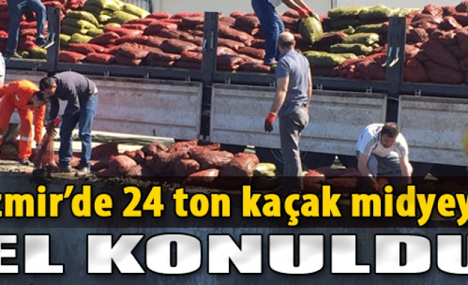 İzmir'de 24 Ton Kaçak Midyeye El Konuldu