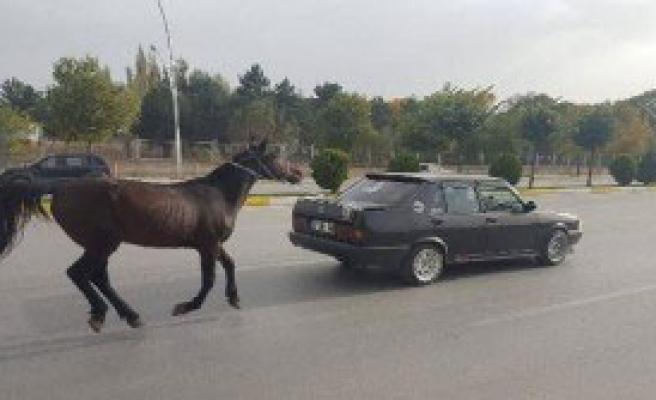 Atı Otomobilin Arkasına Bağlayıp, Trafiğe Çıktı