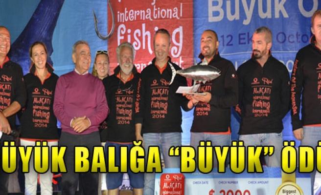 Büyük Balığa 'Büyük' Ödül