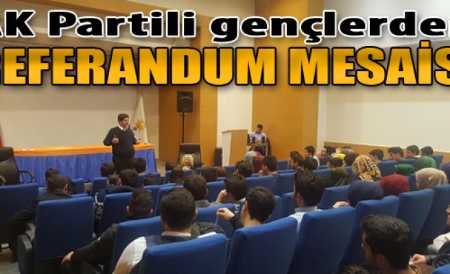 AK Partili Gençlerden Referandum Mesaisi