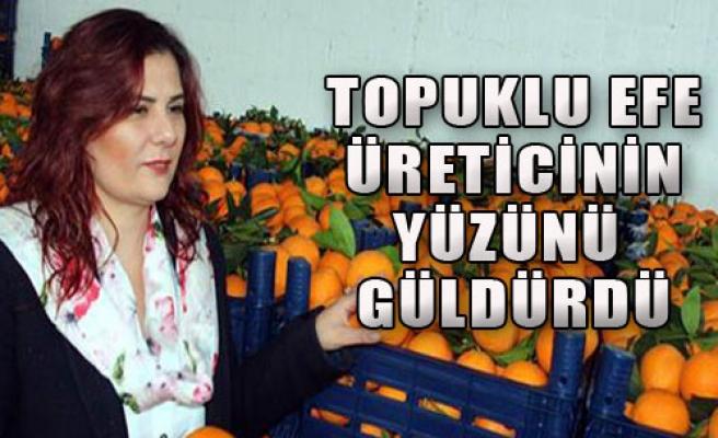 Çerçioğlu 52 Ton Portakal Aldı