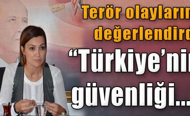 'Türkiye'nin Güvenliği...'