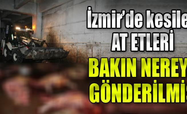 İzmir'de Kesilen At Etleri Oraya Gönderilmiş