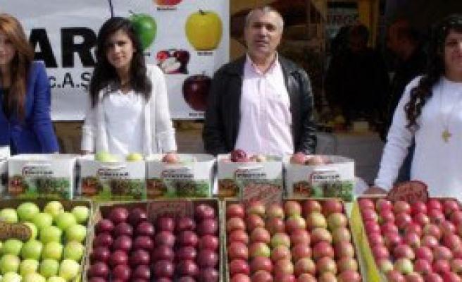 Göksun'da 3'üncü Elma Festivali