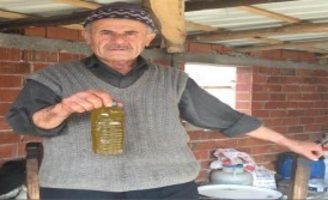 600 Yıllık Yöntemle Zeytinyağı Üretiyorlar