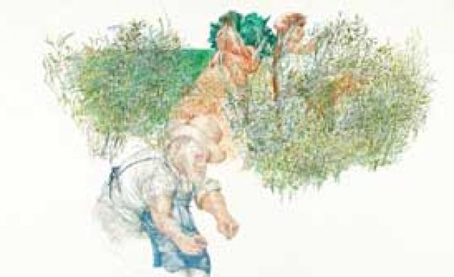 Mehmet Güleryüz'den Desenler