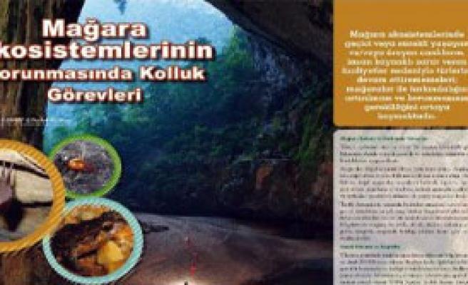 Mağaraların Korunması İçin Düzenleme Önerisi