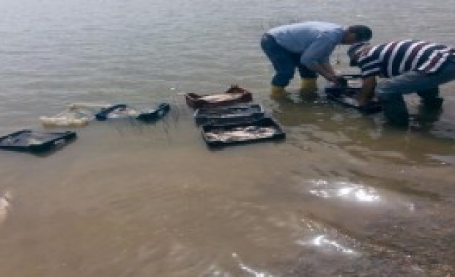 700 Kilo Kaçak Balığa Bin 113 Lira Ceza