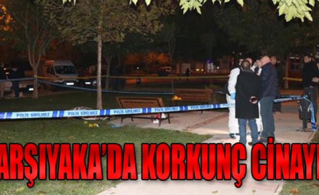 Parkta Tabancayla Öldürüldü