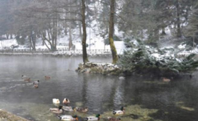 Bosna'ya Kar Sürprizi