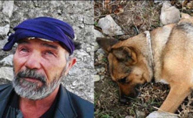 Zehirlenen Rehber Köpeğinin Yerine Yeni Köpek Verilecek