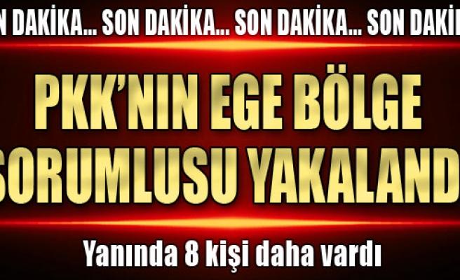 PKK'ya Ege'de Dev Darbe