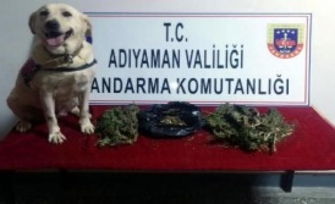 Uyuşturucuya 5 Gözaltı