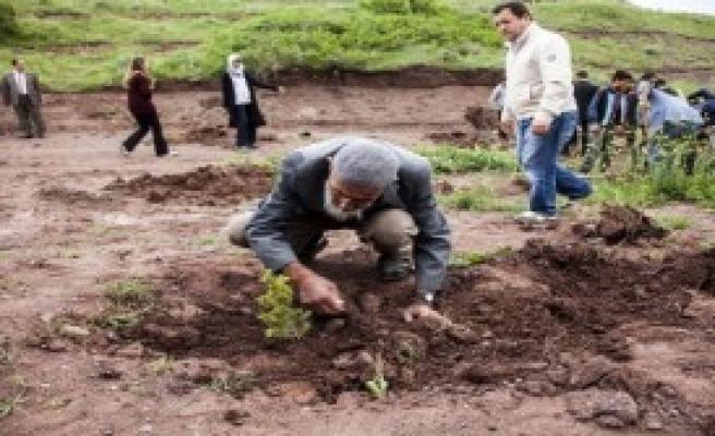 Ahlatlı 'Sofu Dayı' 10 Bin Fidan Dikti