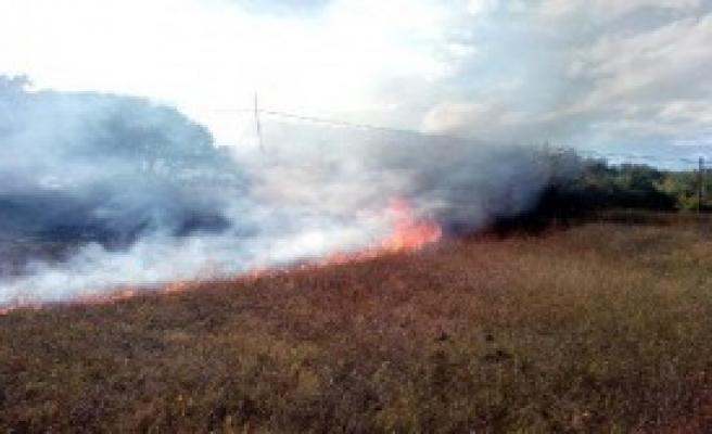 Almus'ta Orman Yangını