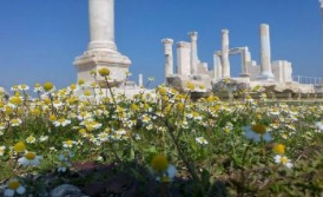 Antik Kent Laodikya Çiçek Açtı