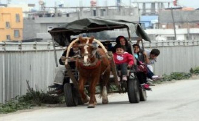 At Arabasıyla Öğrenci Servisi