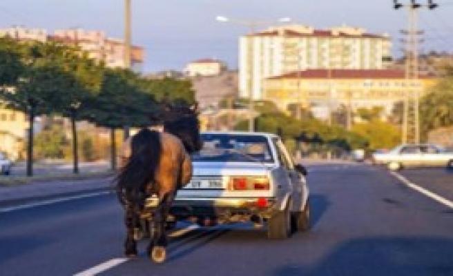 Atı Otomobile Bağlayarak Götürdü