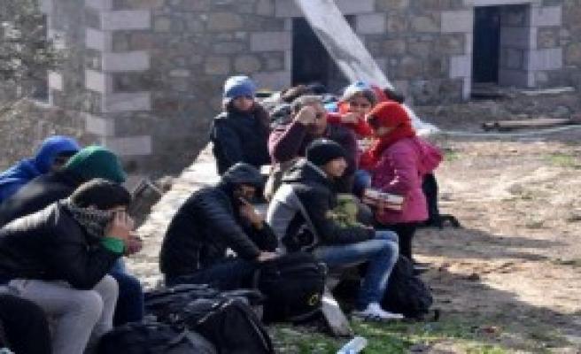 Ayvacık'ta 163 Kaçak Yakalandı