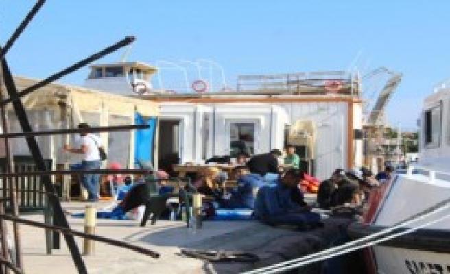 126 Suriyeli Kaçak Yakalandı