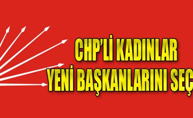 CHP'li Kadınlar Yeni Başkanını Seçti