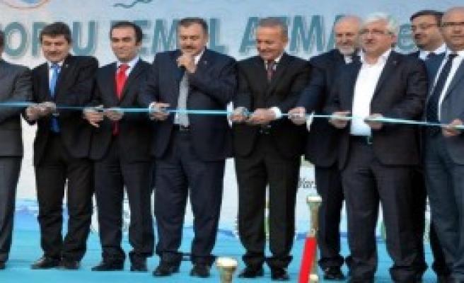 Bakan Eroğlu: İğneada'yla İlgili Bir Çalışma Ve Başvuru Yok