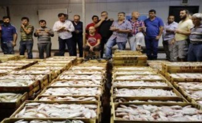 Tavuk Fiyatına Bir Kasa Balık