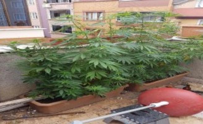 Bayrampaşa'da Uyuşturucu Operasyonu