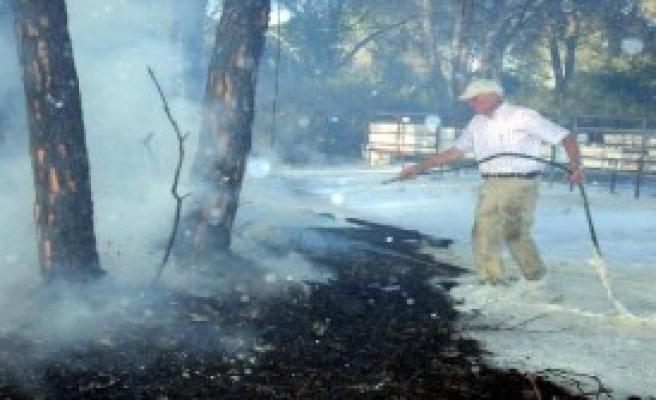 Belek'te Orman Yangını