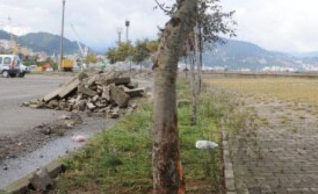 Giresun'da Fırtınanın Yaraları Sarılıyor