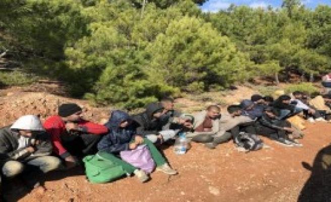 5 Organizatör Gözaltına Alındı
