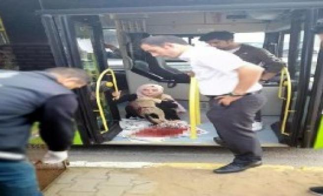 Çarptığı Köpeği Belediye Otobüsüne Alıp, Çağırdığı Görevlilere Teslim Etti