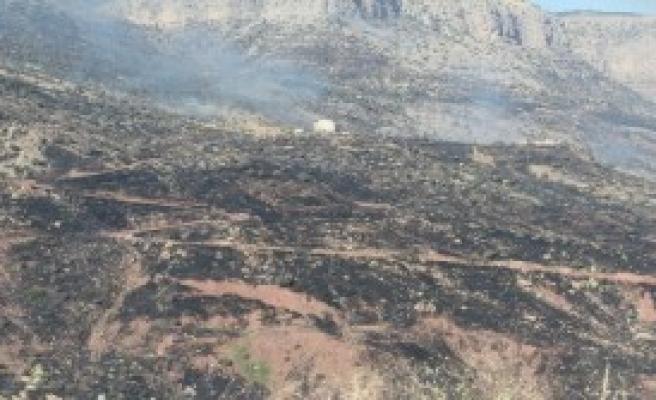 Cudi Dağı'ndaki Yangın Devam Ediyor