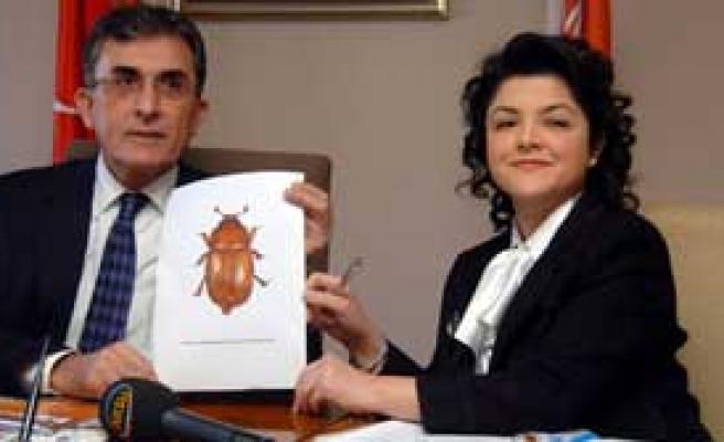 Bu Böceğin Adına İnanamayacaksınız!