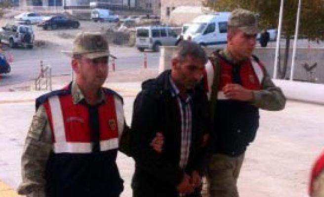 Elazığ'da İnek Hırsızları Yakalandı