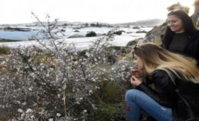 Demre'de Baharı Andıran Görüntüler