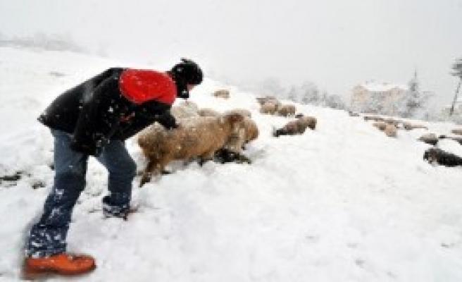 Karadeniz'de Kar Esareti